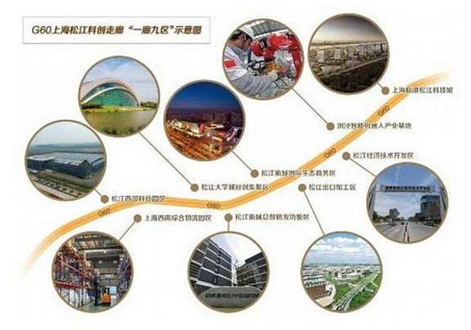 松江经济总量图片_松江鲈鱼