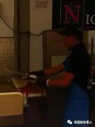 海产店杀个龙虾 居然也能被判成虐待动物了 - 梅思特 - 你拥有很多,而我,只有你。。。