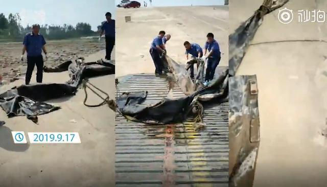 """三峡水怪被打捞 """"真身""""竟是造船厂废弃的20米长气囊,哈哈"""