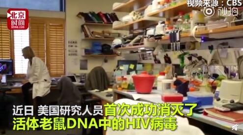 基因編輯技術成功清除HIV病毒 艾滋病有望被治愈
