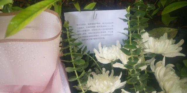 杭州杀妻嫌犯疑似涉及另一桩命案 18年前其前妻闺蜜女儿被杀