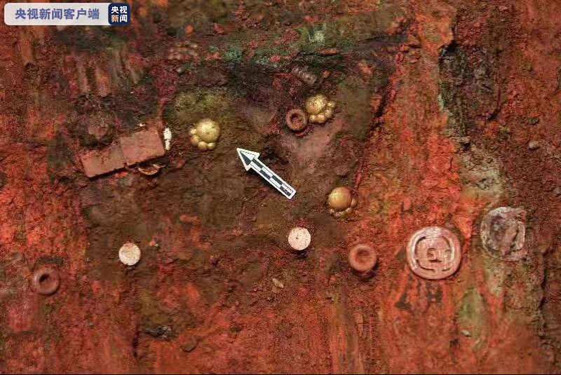 山西墓地出土5件猫爪形金饰